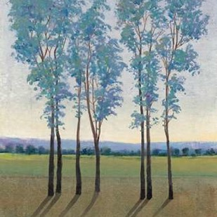 Acreage I Digital Print by O'Toole, Tim,Impressionism