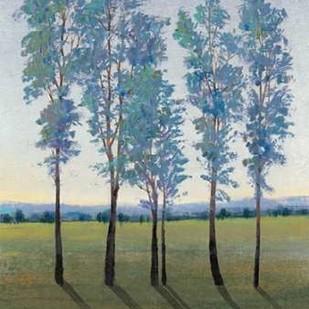 Acreage II Digital Print by O'Toole, Tim,Impressionism