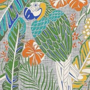 Tropical Macaw Digital Print by Zarris, Chariklia,Decorative