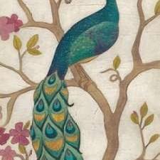 Peacock Fresco I Digital Print by Vess, June Erica,Decorative