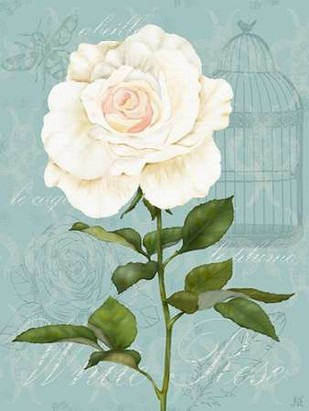Cream Rose I Digital Print by Reynolds, Jade,Decorative