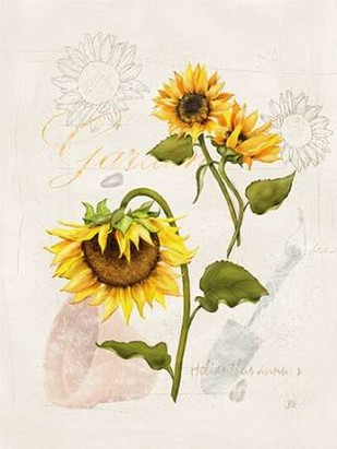Romantic Sunflower I Digital Print by Reynolds, Jade,Impressionism