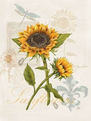 Romantic Sunflower II Digital Print by Reynolds, Jade,Impressionism