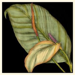 Graphic Tropicals II Digital Print by Goldberger, Jennifer,Decorative