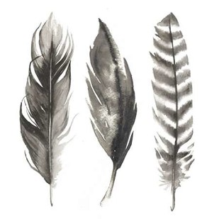 Watercolor Feathers I Digital Print by Popp, Grace,Decorative