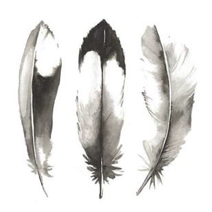 Watercolor Feathers II Digital Print by Popp, Grace,Decorative