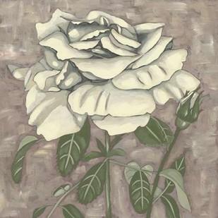 Silver Rose I Digital Print by Zarris, Chariklia,Decorative