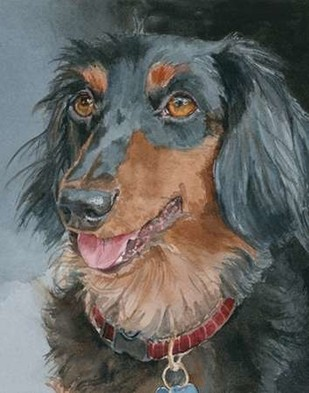 Bongo Long-haired Dachshund Digital Print by Fagan, Edie,Impressionism