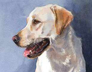 Reggie Yellow Lab Digital Print by Fagan, Edie,Impressionism