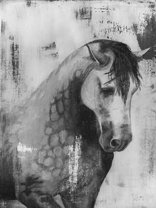 Dappled Grey II Digital Print by McCavitt, Naomi,Impressionism