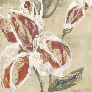 Lilys Breath II Digital Print by Goldberger, Jennifer,Impressionism