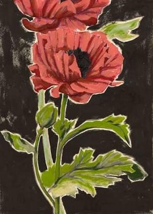 Haloed Poppies II Digital Print by Popp, Grace,Decorative