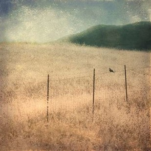 In Country II Digital Print by Malek, Honey,Impressionism