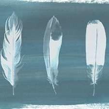 Feathers on Dusty Teal I Digital Print by Popp, Grace,Minimalism