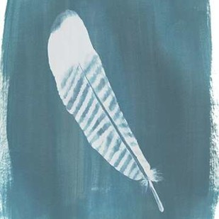 Feathers on Dusty Teal VI Digital Print by Popp, Grace,Minmalism