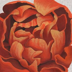 Fiery Floral I Digital Print by Popp, Grace,Decorative