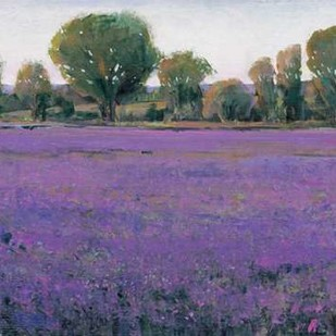 Lavender Field I Digital Print by O'Toole, Tim,Impressionism