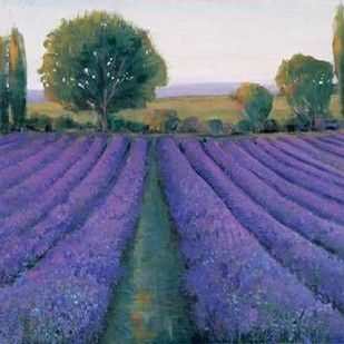 Lavender Field II Digital Print by O'Toole, Tim,Impressionism