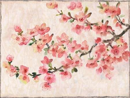 Cherry Blossom Composition I By Artist O Toole Tim