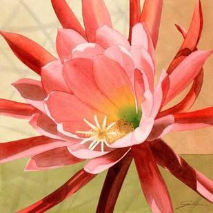 Desert Bloom I Digital Print by Higby, Jason,Realism