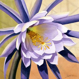Desert Bloom II Digital Print by Higby, Jason,Impressionism