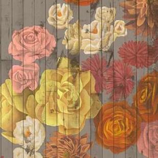 Danza del Sol II Digital Print by Popp, Grace,Decorative