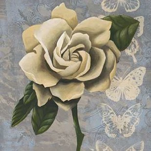 Blissful Gardenia I Digital Print by Popp, Grace,Decorative