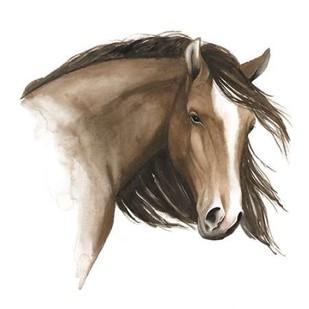 Wild Horse I Digital Print by Popp, Grace,Impressionism