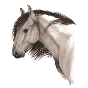 Wild Horse II Digital Print by Popp, Grace,Impressionism