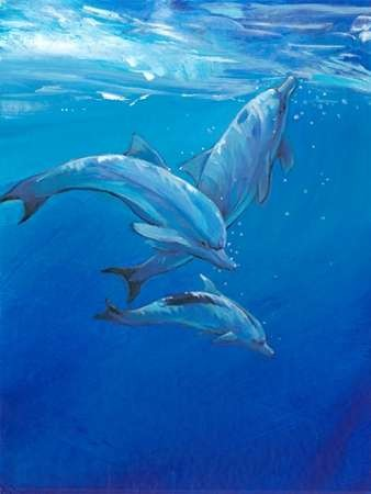 Under Sea Dolphins Digital Print by Otoole, Tim,Impressionism