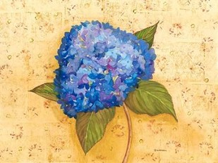 Hydrangea Love II Digital Print by Russell, Wendy,Decorative