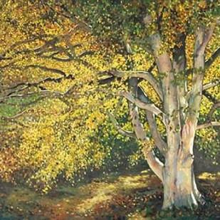 Golden Light I Digital Print by Reynolds, Graham,Impressionism