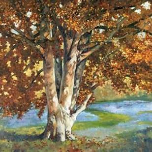 Golden Light II Digital Print by Reynolds, Graham,Impressionism
