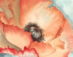 Watercolor Poppy II Digital Print by Meagher, Megan,Decorative