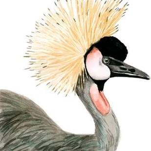 Watercolor Crested Crane Digital Print by McCavitt, Naomi,Decorative