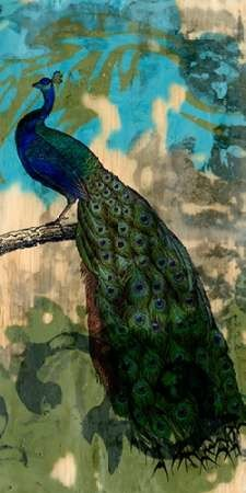 Rustic Peacock II Digital Print by Goldberger, Jennifer,Impressionism