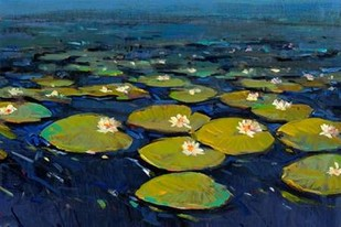 Lily Pads I Digital Print by Otoole, Tim,Impressionism