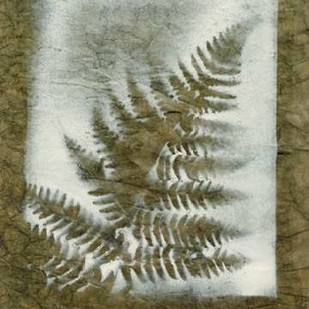 Shadows & Ferns I Digital Print by Stramel, Renee W.,Decorative
