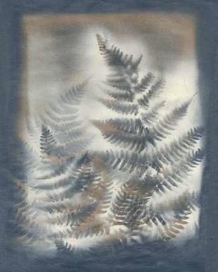 Shadows & Ferns V Digital Print by Stramel, Renee W.,Decorative