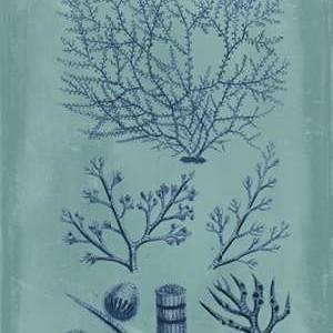 Indigo & Azure Seaweed III Digital Print by Vision Studio,