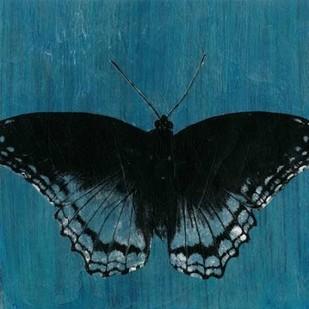 Chambray Butterflies II Digital Print by McCavitt, Naomi,Decorative
