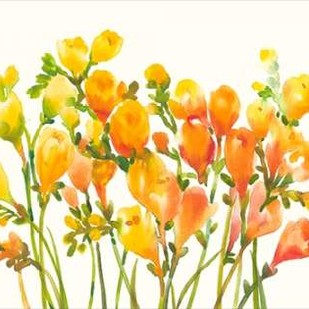 Freesia I Digital Print by Otoole, Tim,Impressionism