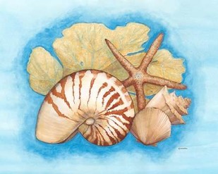Seashells & Seafan I Digital Print by Russell, Wendy,Decorative