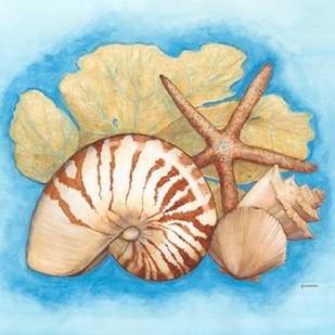 Seashells & Seafan I Digital Print by Russell, Wendy,Decorative