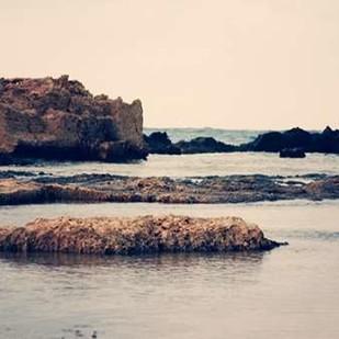 Mediterranean II Digital Print by Coomes, Sylvia,
