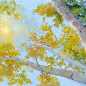 Aspen Canopy Digital Print by Oleson, Nanette,Impressionism