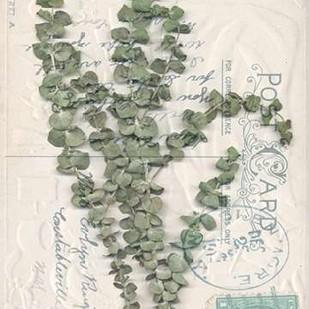 Small Postcard Wildflowers IV Digital Print by Goldberger, Jennifer,Decorative
