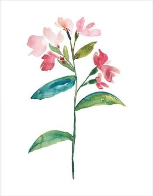 Watercolor Garden III Digital Print by Mosley, Kiana,Art Deco
