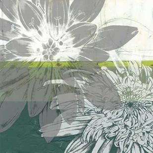 Graphic Blooms I Digital Print by Goldberger, Jennifer,Decorative