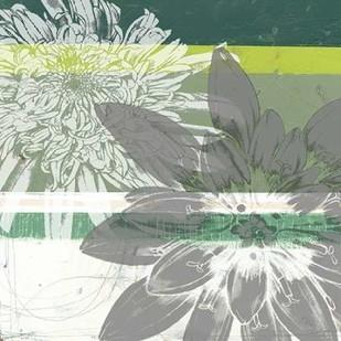 Graphic Blooms II Digital Print by Goldberger, Jennifer,Decorative